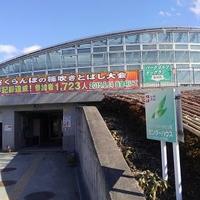 最上川ふるさと総合公園の写真