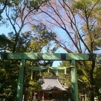 諏訪神社の写真