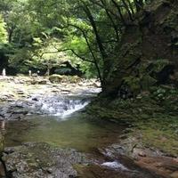 赤目四十八滝 忍者の森の写真