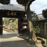 松応寺の写真