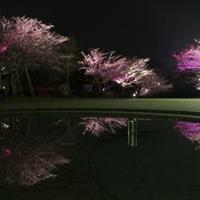 久峰総合公園四半的弓道場の写真