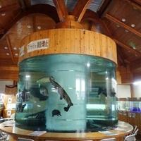 小林市役所 商工観光課・出の山淡水魚水族館の写真