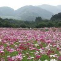 リフレッシュパーク豊浦の写真