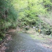 まぼろしの滝の写真