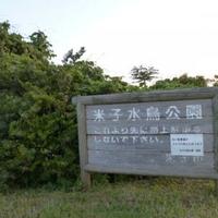 米子水鳥公園の写真