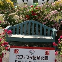 花フェスタ記念公園の写真