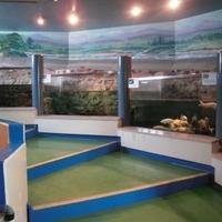 山方淡水魚館の写真