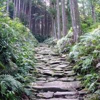 世界遺産熊野古道馬越峠の写真