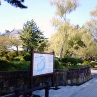 亀城公園の写真