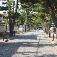 鶴嶺八幡宮の写真