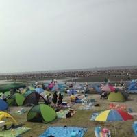 ふなばし三番瀬海浜公園の写真