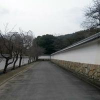 勧修寺の写真
