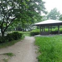猿江恩賜公園の写真