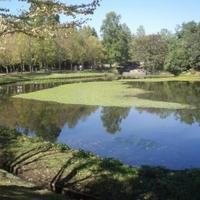 水戸市植物公園の写真