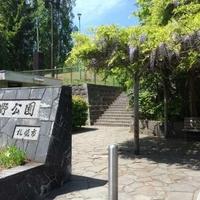 藤野公園の写真