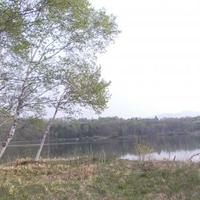 バラギ高原キャンプ場の写真