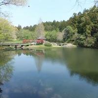 七ツ洞公園の写真