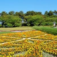 鹿児島県立吉野公園ちびっこプールの写真