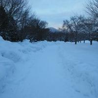ホテルマイステイズ札幌中島公園の写真