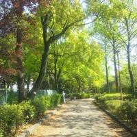 平和の森公園の写真