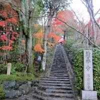 華厳寺 鈴虫寺の写真