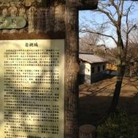 岩槻城址公園の写真