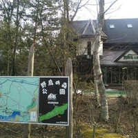 西湖野鳥の森公園の写真