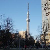 錦糸公園の写真