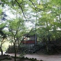 宮島(紅葉谷公園)の写真