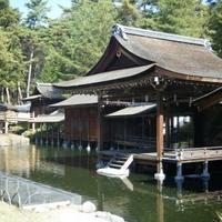 身曾岐神社の写真