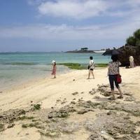 エメラルドビーチの写真
