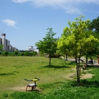 峰塚公園の写真