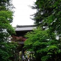 隆国寺の写真