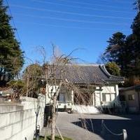 東妙寺の写真