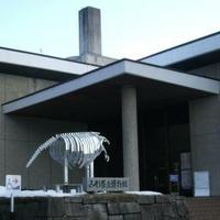 山形県立博物館の写真