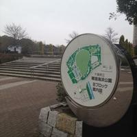 県立幕張海浜公園の写真