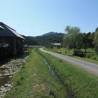 トンボ自然公園の写真