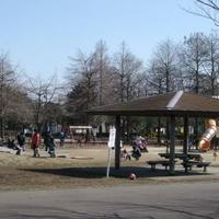 みさと公園の写真