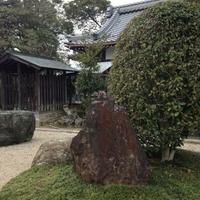 守山市立 近江妙蓮公園・資料館の写真