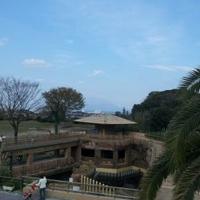 鹿児島市 平川動物公園の写真