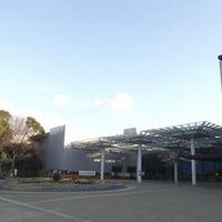 大阪市立自然史博物館の写真