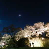 大阪市立大学理学部附属植物園の写真