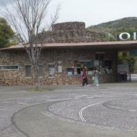 高知県立のいち動物園の写真