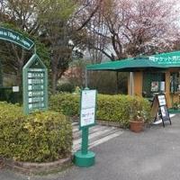 北川村モネの庭マルモッタンの写真