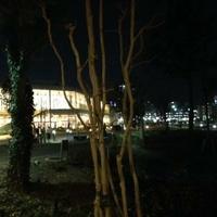 倉敷みらい公園の写真
