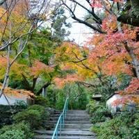 瑞巌寺庭園の写真