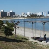 大森ふるさとの浜辺公園の写真