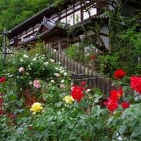松尾寺の写真