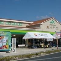 JA直売所 JAおきなわ食菜館 菜々色畑の写真