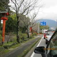 枚聞神社の写真